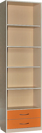 Шкаф для книг «Милый Беби» П206.11-1